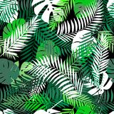 Seamless tropical pattern with palm leaves for fabric design or other uses. Endless exotic background with jungle Stock Image