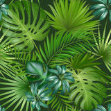 Seamless tropical pattern with palm leaves for fabric design or other uses. royalty free illustration