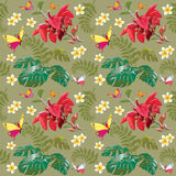 Seamless tropical pattern with red Orchid. Seamless tropical pattern with a red Orchid, fern and butterfly Royalty Free Stock Photo