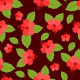 Seamless tropical pattern with stylized hibiscus Stock Photo
