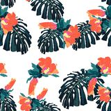 Seamless tropical pattern, vivid tropic foliage, with monstera leaves and orange hibiscus flowers. Modern bright summer print design. White background royalty free illustration