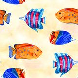 Seamless tropical pattern. Watercolor illustration with hand drawn aquarium exotic fish on white background. Blue set. Seamless tropical pattern. Watercolor stock illustration