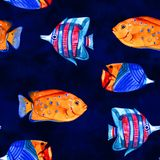 Seamless tropical pattern. Watercolor illustration with hand drawn aquarium exotic fish on white background. Blue set. Seamless tropical pattern. Watercolor royalty free stock photo