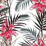 Seamless tropical red protea flower pattern background. Jungle leaves, on light background. Exotic print. Vintage motives. White background stock illustration