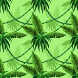 Seamless pattern with tropical leaves and lianas vector illustration