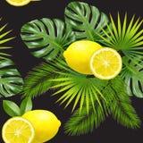 seamless tropiskt för modell vektor Royaltyfri Foto