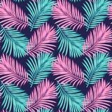 seamless tropiskt f?r bakgrund Hand-dragen illustration av palmblad Bakgrund som skapar din design: förpacka inbjudningar, gr royaltyfri foto