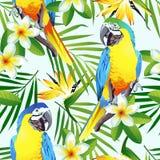 Seamless tropiskt mönstrar med fåglar Arkivfoto