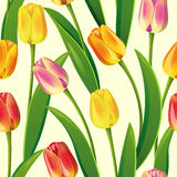 Seamless from tulips. Seamless from yellow tulips and green leaves(can be repeated and scaled in any size)Clipping Mask Royalty Free Stock Photos
