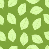 Seamless usual leaves Royalty Free Stock Image