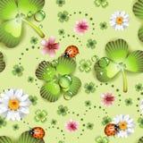 seamless växt av släkten Trifoliummodell Royaltyfria Bilder