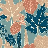 Seamless vector autumn pattern with hand drawn tree leaves. autumn design for covers, packaging, printing Stock Photos