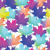 Seamless Vector Autumnal Leaves Pattern. Maple leaf Abstract  Royalty Free Stock Photography