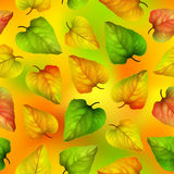 Seamless vector background, colorful autumn leaves, Royalty Free Stock Photography