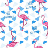 Seamless vector background, Flamingo and triangle. Stock Images