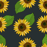 Seamless vector background with flowers of sunflowers Royalty Free Stock Photography