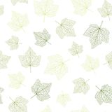 Seamless vector background. Green leaves with veins. Stock Images