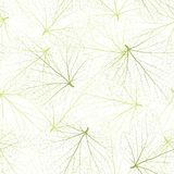 Seamless vector background. Green leaves with veins. Royalty Free Stock Image