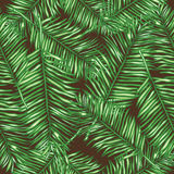 Seamless vector background palm leaves Royalty Free Stock Photos