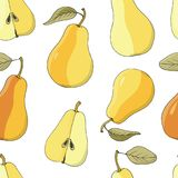 Seamless vector  background with ripe pears on dark green. Hand drawn vector illustration with fruits Royalty Free Stock Images