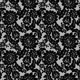 Seamless Vector Black Lace Royalty Free Stock Photography