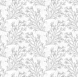 Seamless vector black and white vine pattern Royalty Free Stock Photo