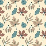Seamless vector autumn pattern with hand drawn tree leaves. autumn design for covers, packaging, printing Royalty Free Stock Photo