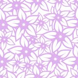 Seamless vector cyclamen pattern Stock Images