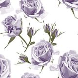 Seamless vector design pattern arranged from violet roses. Trendy summer watercolor style design. vector illustration