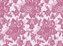 Seamless Vector Pink Lace Royalty Free Stock Photography