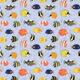 Seamless vector fish pattern. Butterflyfish, Clown Triggerfish, Damsel, Anemonefish, Angelfish, Clownfish. Tropical colorful reef. Fishes background. Hand drawn stock illustration