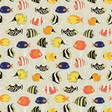 Seamless vector fish pattern. Tropical colorful reef fishes background. Butterflyfish, Clown Triggerfish, Damsel, Anemonefish, royalty free stock photo
