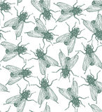 Seamless vector flies pattern in engraved style Royalty Free Stock Image