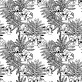 Seamless vector Floral black and white patterns vector illustration