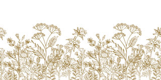 Free Seamless Vector Floral Border With Black White Hand Drawn Herbs And Wild Flowers Royalty Free Stock Image - 73675876