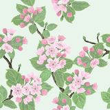 Seamless vector floral pattern Stock Photos