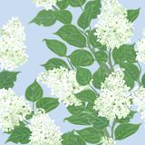 Seamless vector floral pattern stock illustration