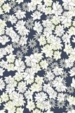 Seamless vector floral pattern on dark background Stock Photography