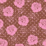Seamless vector floral pattern or elegant vintage. Pink rose background with pink polka dots and roses on brown background Stock Image