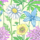 Seamless vector floral pattern. Stock Image