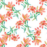 Seamless vector floral pattern. Lilies flowers. Fashionable and quality pattern. Watercolor handmade painting Stock Photos