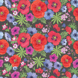 Seamless Vector Floral Pattern with Poppies and Anemones. Stock Photography