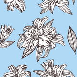 Seamless vector floral pattern. Royal lily flowers on a blue background. Royalty Free Stock Photos