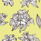 Seamless vector floral pattern. Royal lily flowers on a yellow background. Stock Photos