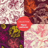 Seamless vector floral pattern set Stock Images