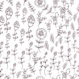 Seamless vector floral pattern, spring,summer backdrop. Hand drawn surface design flowers in garden. Royalty Free Stock Photos