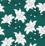 Seamless vector floral wallpaper design on green background Stock Photos