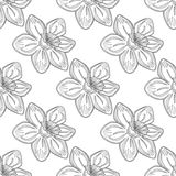 Seamless vector flower pattern,  background with flowers, over grey backdrop. Line drawing. Royalty Free Stock Photography