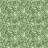 Seamless vector flowers pattern, vintage background with line drawed frowers, over pastel green backdrop Stock Images