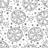 Seamless vector hand drawn childish pattern with fruits. Cute childlike lime, lemon, orange, grapefruit with leaves, seeds, drops. Stock Image